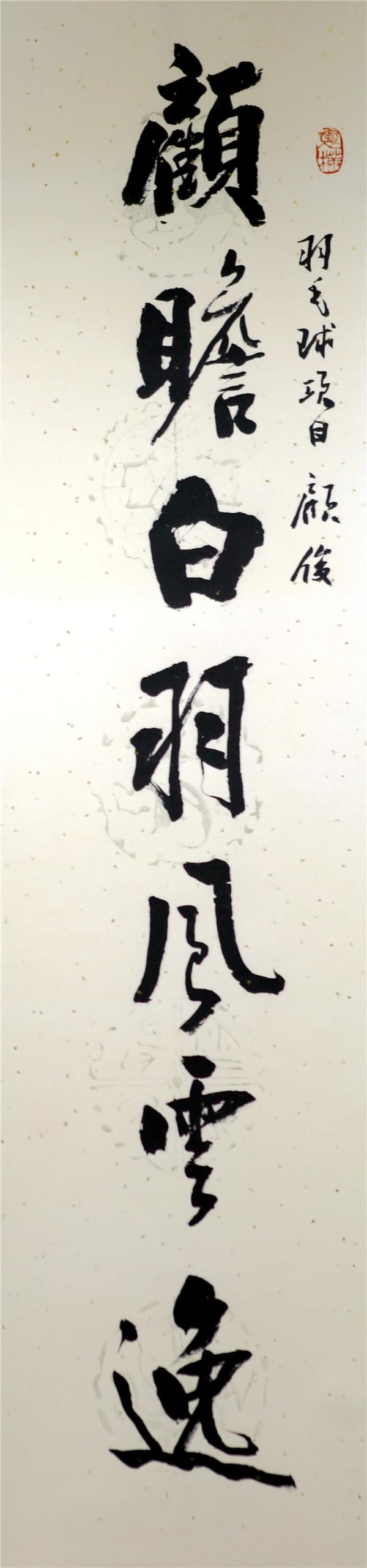 序号355,书录刘晓为江苏奥运冠军顾俊嵌名联