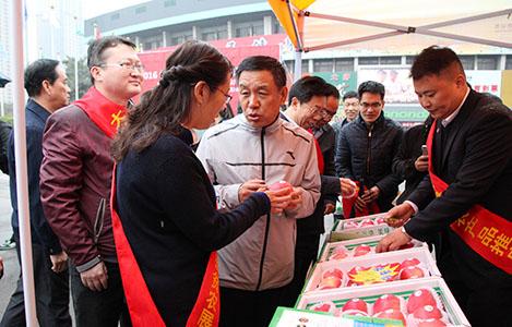 山西省体育局扶贫点农展会在太原举行