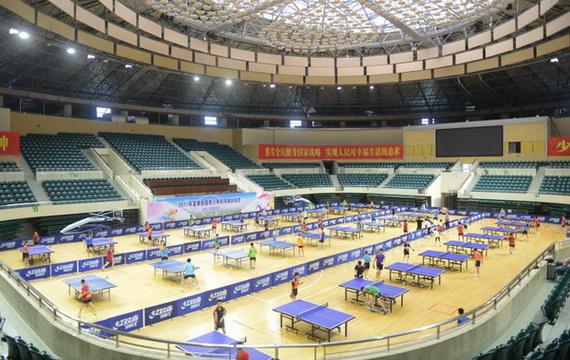 乒乓训练营从排位赛开始