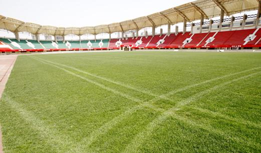 财政补贴建足球场激发社会力量参与潜能