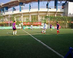首届全国体育新闻工作者足球联赛(河南赛区)第十轮激战图集