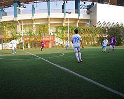 首届全国体育新闻工作者足球联赛(河南赛区)第十三轮集锦