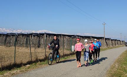 强化体能 提升成绩 竞走队坚定训练目标不放松