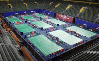 2020年全国羽毛球计划内比赛