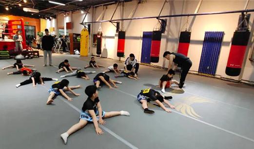 河北省体育消费券发放显成效