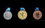第11届民运会奖牌