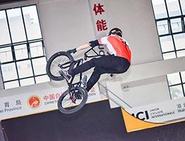 BMX自由式