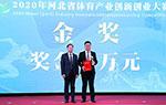 2020年河北省体育产业创新