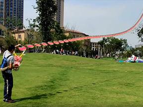 2020中国虚拟网络风筝节