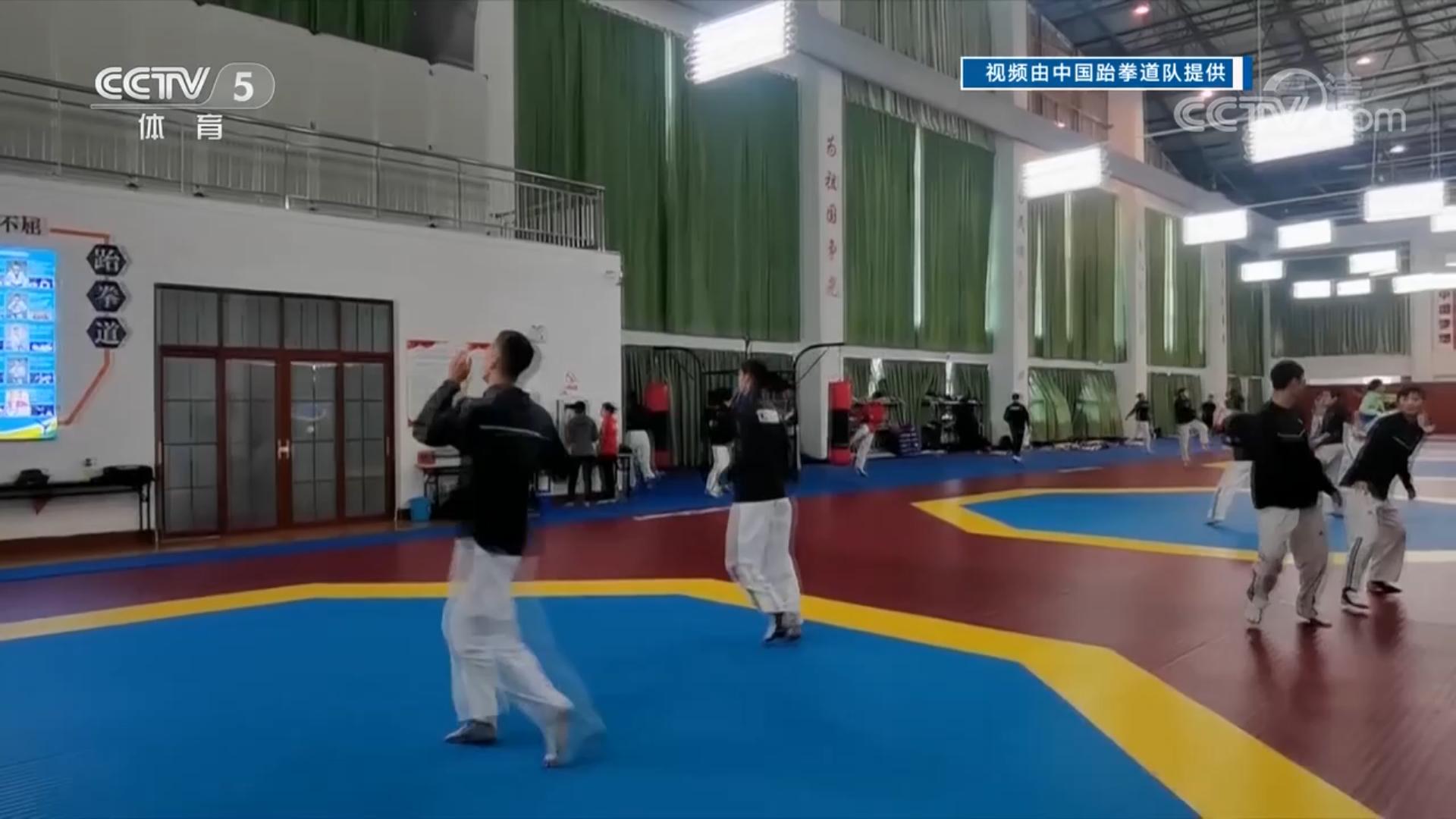 中国跆拳道队:备战奥运不停训
