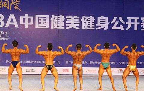 康比特杯2017年CBBA美国马术v马术公开赛举中国协会健美图片