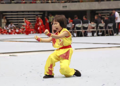 """""""和也杯""""第十二届浙江国际传统武术比赛圆满"""