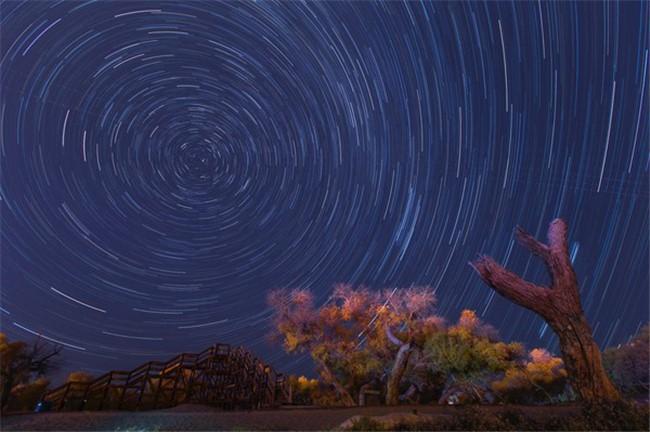 金色夜空图片素材网