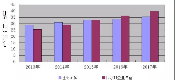 2013-2017年社会组织结构变化